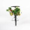 de035 bicyclette fleurie face