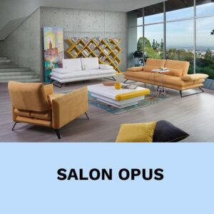 Salon Opus VIP Location