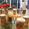 salon tronc d'arbre location naturel