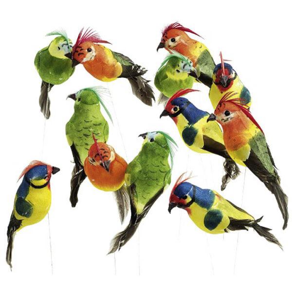 de014 mini perroquet deco multicolore 12 pieces location