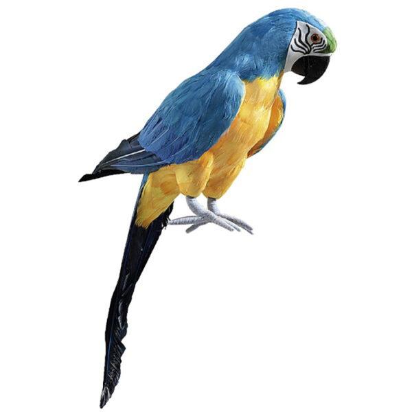 de017 perroquet deco bleu jaune location