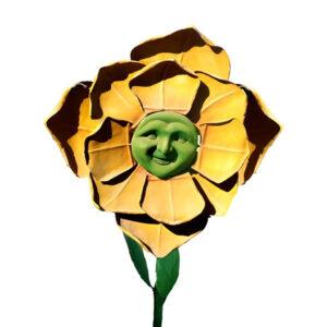 de145 fleur visage humain automate location